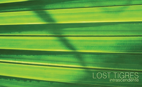 Lost Tigres