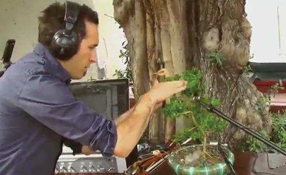 Música de Jardín