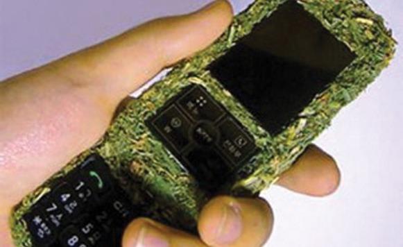 Teléfono Biodegradable (Por Iohanna Küppers)