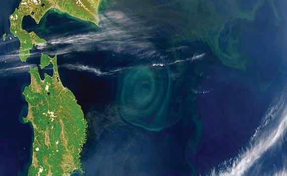 La Isla de basura en el Pacífico (Por Iohanna Küppers)