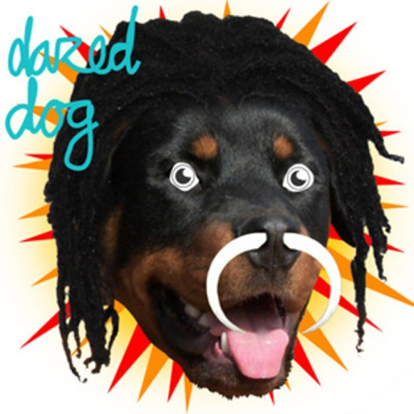 dazed dog gully juke ep