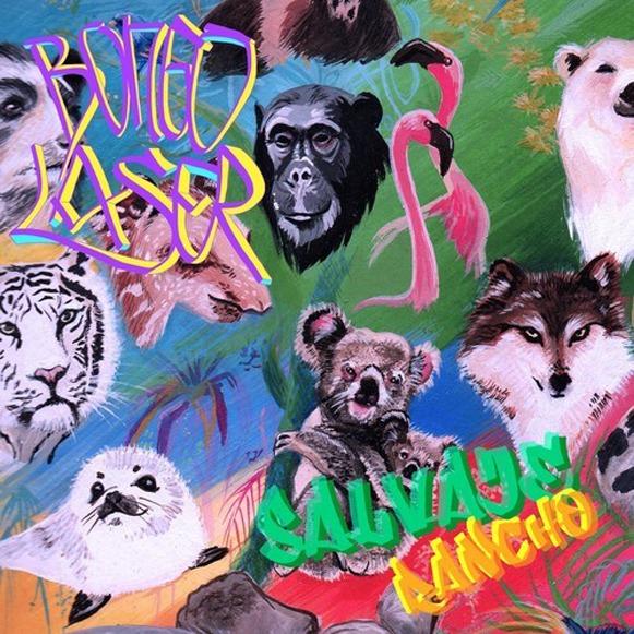 Bongo Laser-Salvaje Rancho