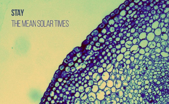 Stay-The Mean Solar Times