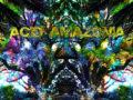 Psycho Tropiques-Acid Amazonia (por El Zombi Flash – Curuba – name your price)